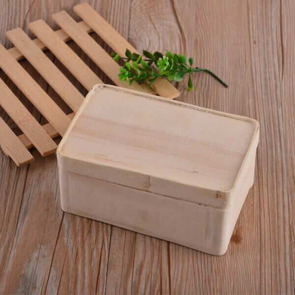bento lunch boxes for adults